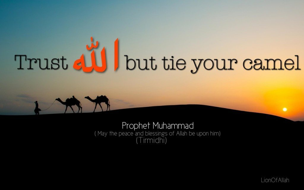 Trust Allah but tie your camel first
