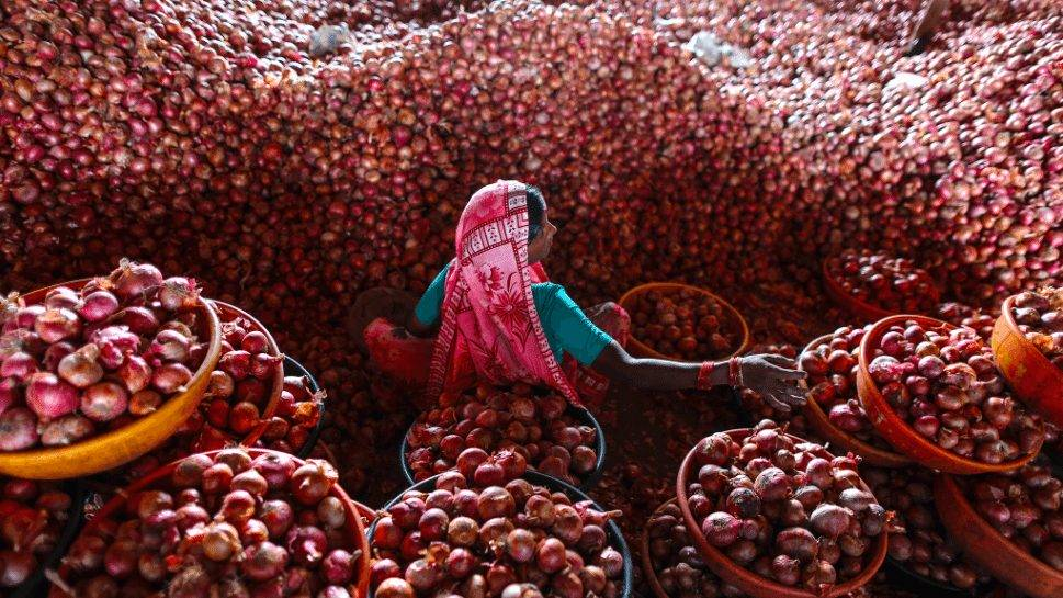 There's more to Nabil's onions than meets the eye
