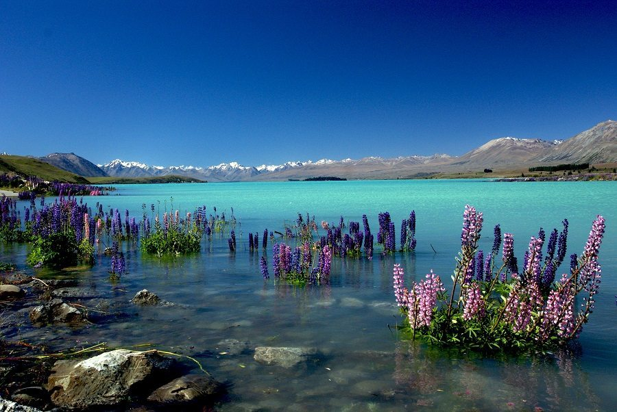 1-new-zealand-january-best-countries-to-visit