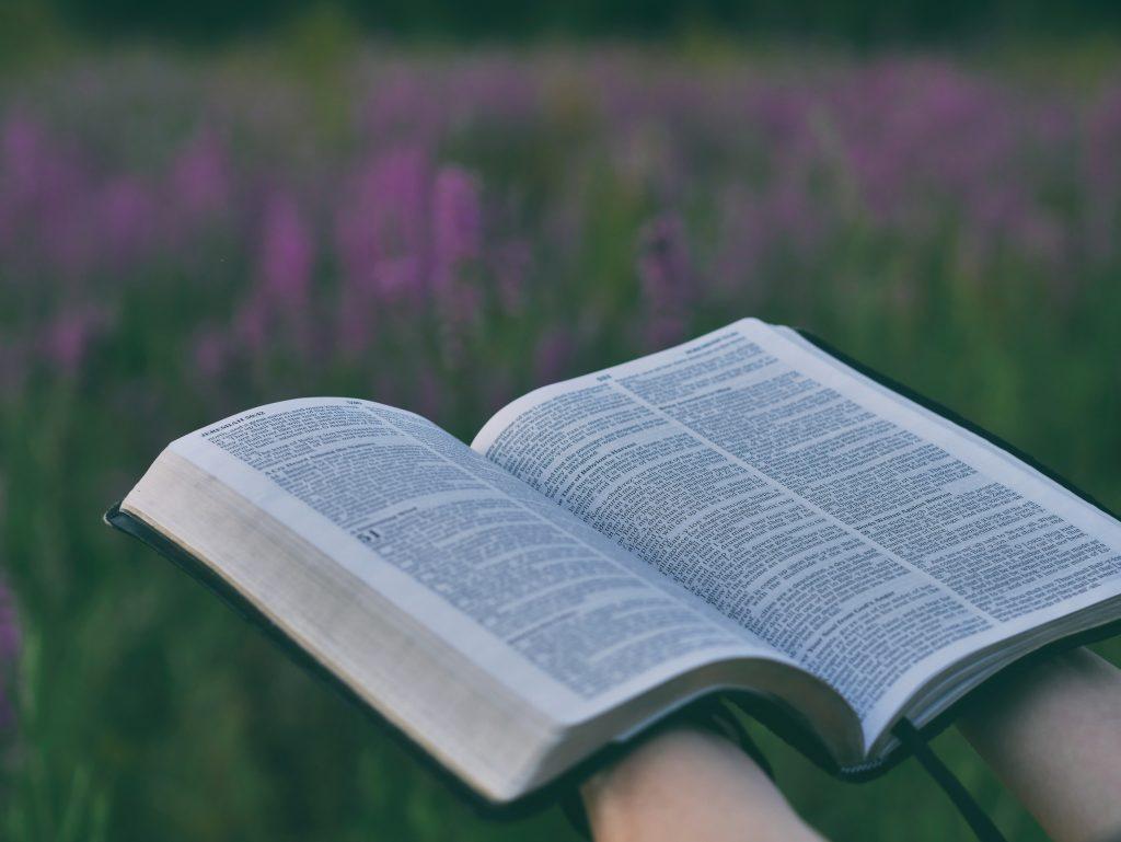 Biblical & Quranic hope in a time of despair